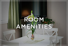 room-amenities