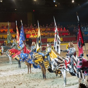 Medieval Times_68ogg_february2014_square for website