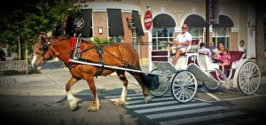 Enjoy carriage rides at The Market Common while on vacation in Myrtle Beach at Plantation Resort!