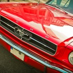 Events in Myrtle Beach for September 2018 to help plan your perfect Myrtle Beach vacation at Plantation Resort - Enjoy Mustang Week in Myrtle Beach