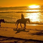 An Unforgettable Experience – A Romantice Horseback Ride on the Beach!