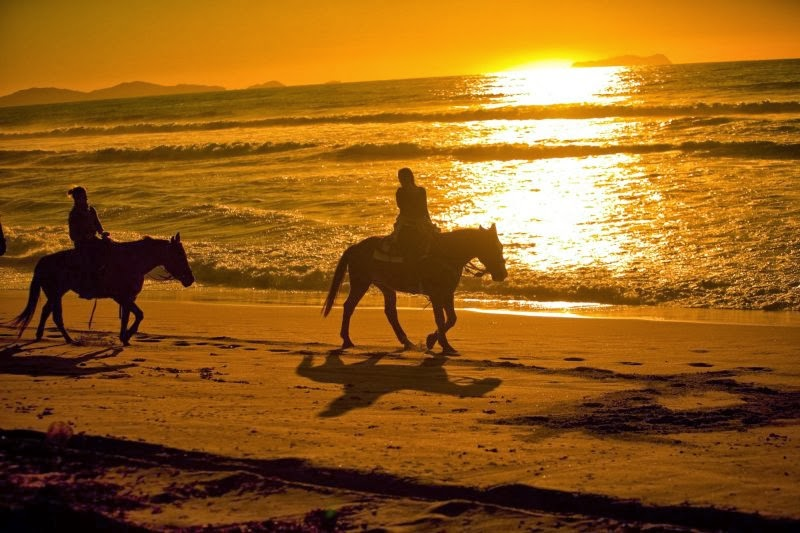 An Unforgettable Experience A Romantice Horseback Ride